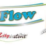 Профессиональная чистка зубов Air Flow в Киеве. Акция! Старая цена до конца лета!